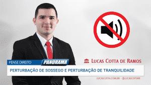 Read more about the article Perturbação de sossego e perturbação de tranquilidade